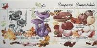 COMUNICAT DE PRESĂ - Intoxicaţia cu ciuperci